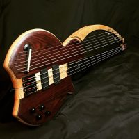Bass of the Week: Barton Basses 11-String Fretless Harpbass