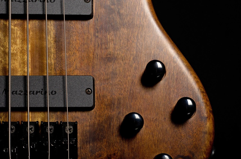 Hernan Gordon Astor Bass Controls