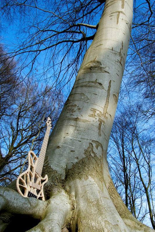 Rikkers Guitars Treeline Bass Big Tree