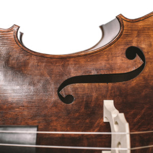 Bass of the Week: Neal Heppleston Panormo Double Bass