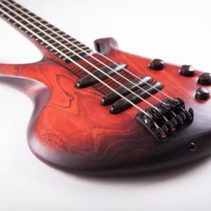 Bass of the Week: Ergon Guitars Cintra
