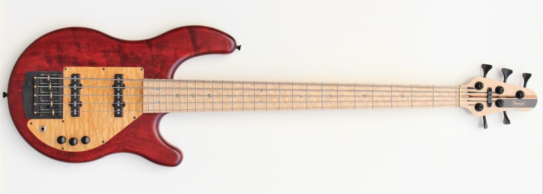 Tensor Classic Series 5-String Bass