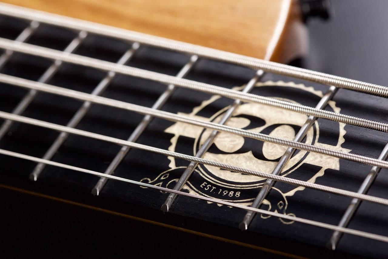 Boldogh Guitars EBS 30th Anniversary Bass Inlay