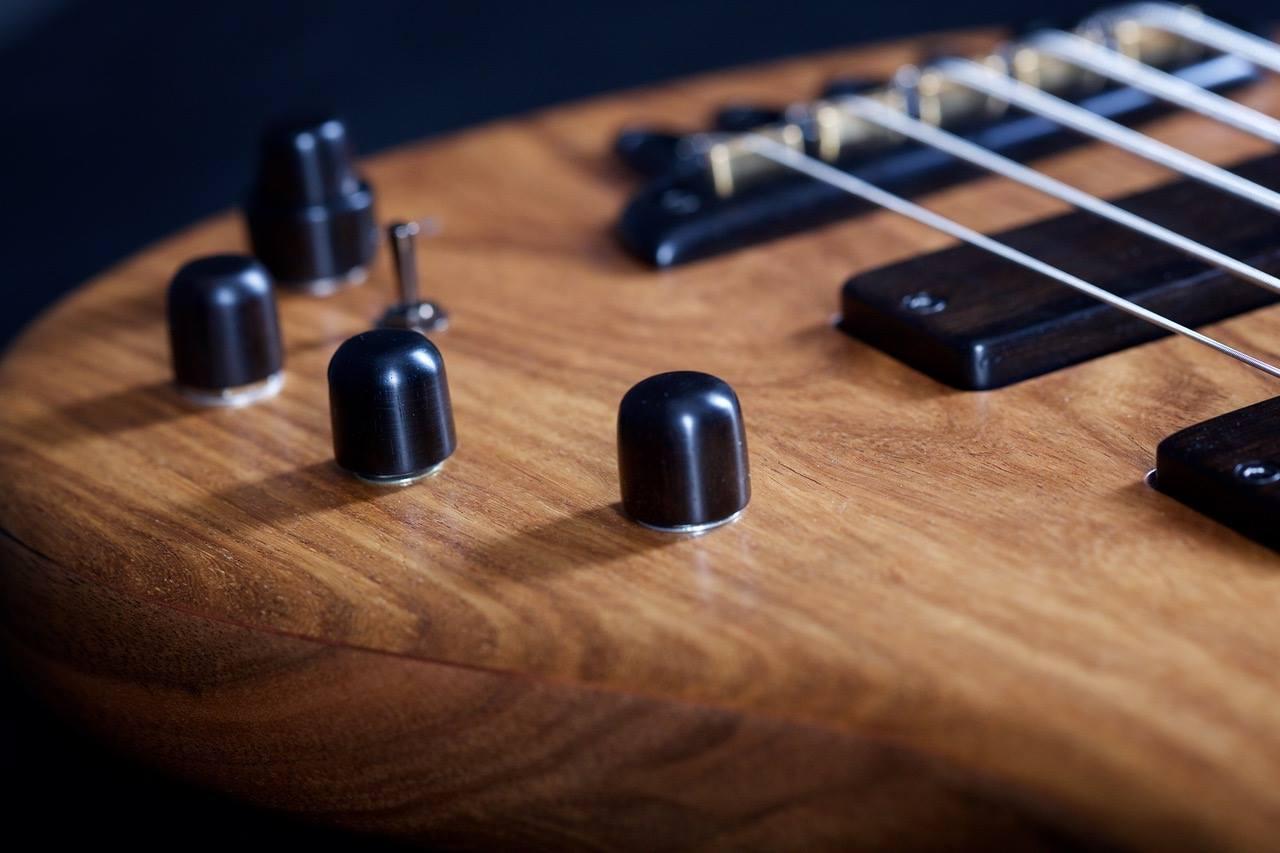 Boldogh Guitars EBS 30th Anniversary Bass Knobs