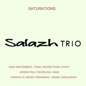 Salazh Trio: Saturations