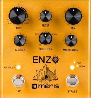 Meris Enzo Multi-Voice Instrument Synthesizer Pedal