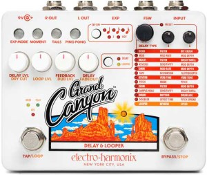 Electro-Harmonix Grand Canyon Delay with Looper Pedal