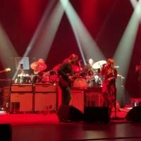 Tedeschi Trucks Band: Shame
