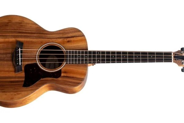 Taylor Adds Koa Version of GS Mini-e Bass