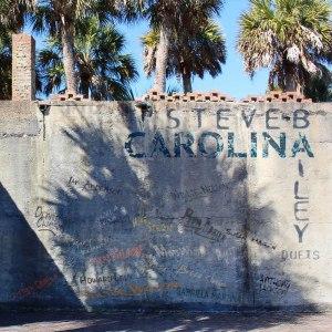Steve Bailey: Carolina