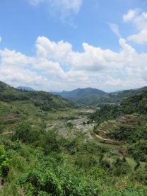 Vallée de Banaue