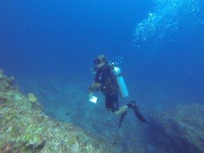 Joel sous l'eau