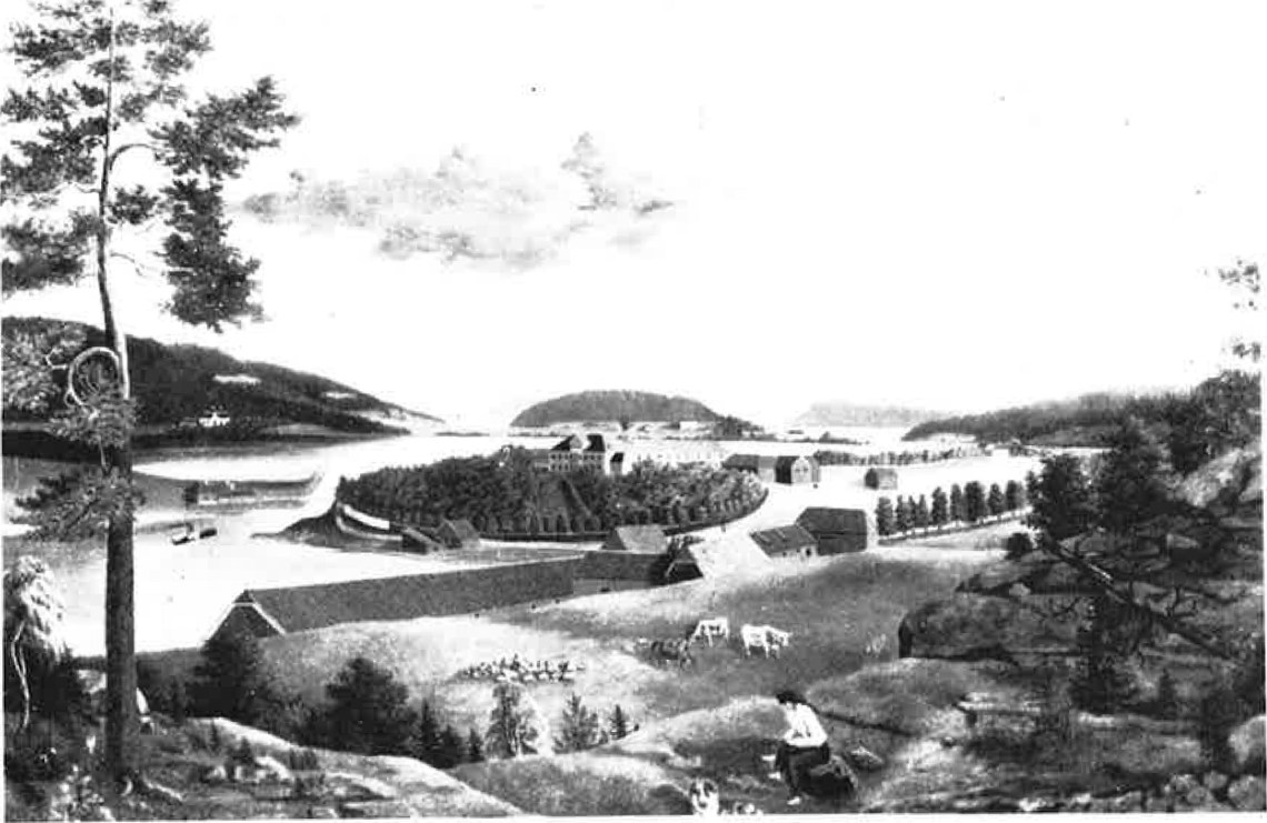 I1865 lå Nøtterøys største gård på Teie, Teie hovedgård (innlemmet i Tønsberg fra 1. januar 1877). Gården hadde da 54 kuer, 4 svin og 11 hester. 72 personer var knyttet til gården, hvorav 36 til hovedbølet (Etter maleri av H.G. Wang fra ca. 1850).
