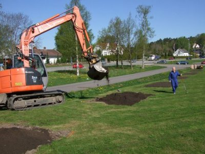 63a1e7df3c-Planting web