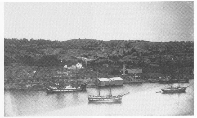 Tenvik trankokeri på Nøtterøy. Foto: Vestfoldminne 1995.