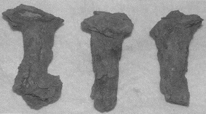 Bildet viser 3 klinknagler/båtsøm funnet i felt HII. (Foto: Eli Ulriksen.)