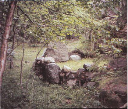 Skjulested for andejegere på østsiden av Bjerkøy. Brukes det fortsatt? (Foto: Tor Bjørvik)