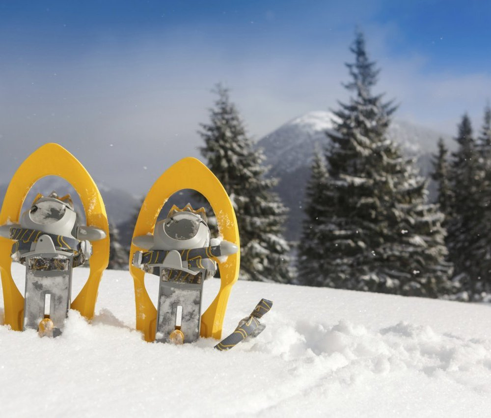 Snowshoeing Schnee