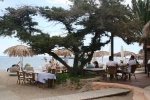 Un lugar tranquilo para disfrutar de la cocina mediterránea.