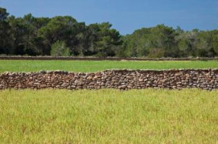Imagen de una pared de pedra seca.