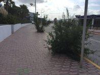 Mal estado del acceso a es Botafoc. Foto: EPIC