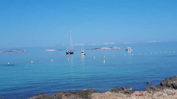 Barcos fondeados sobre posidonia en Sant Antoni.