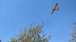 Una avioneta del Ibanat