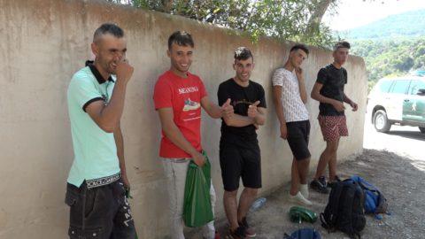 Imagen de algunos de los detenidos este verano. Fotos: Ibiza Producciones