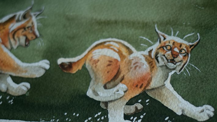 lynx watercolor by Noukah