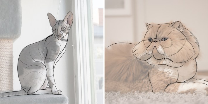 cats tracing line art