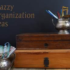 Ideas, photos and links showing snazzy organization ideas for your stuff using 7 easily found but uncommon containers styles