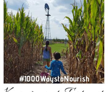 Children walking on a farm, in a corn field