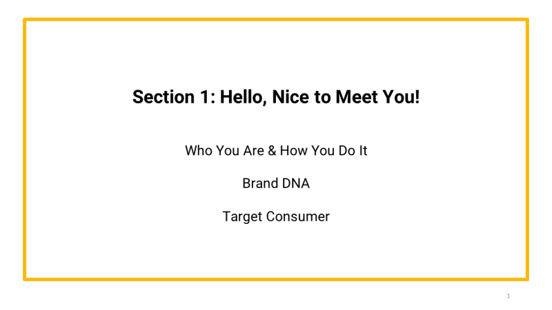 brand primer template section 1 hello nice to meet you