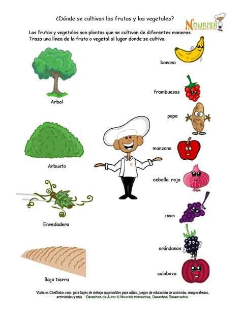 Dnde Se Cultivan Las Frutas Y Los Vegetales Hoja De