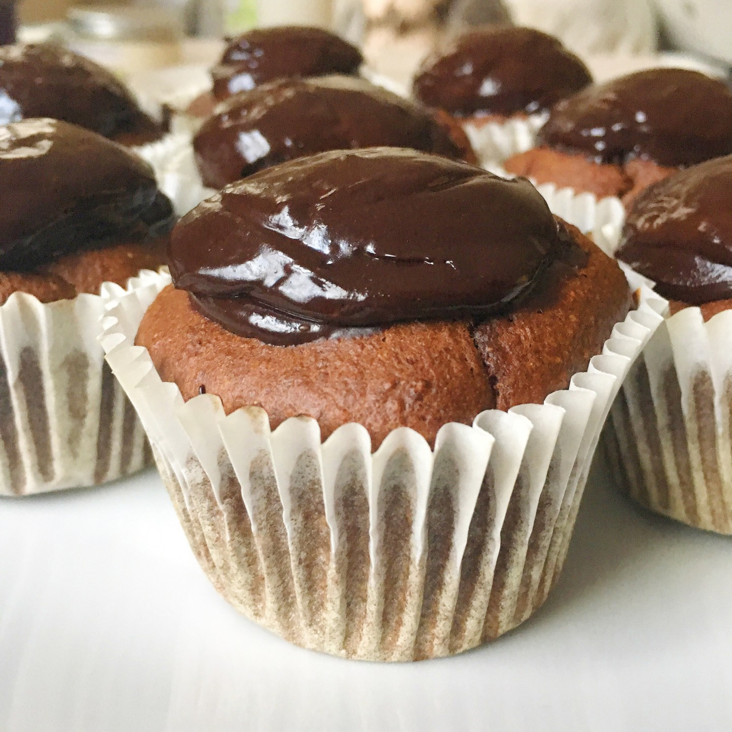 Chocolate cupakes with chocolate fudge icing
