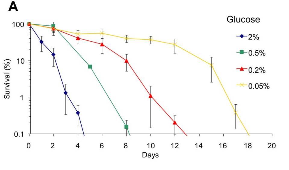 graphique survie des cellules