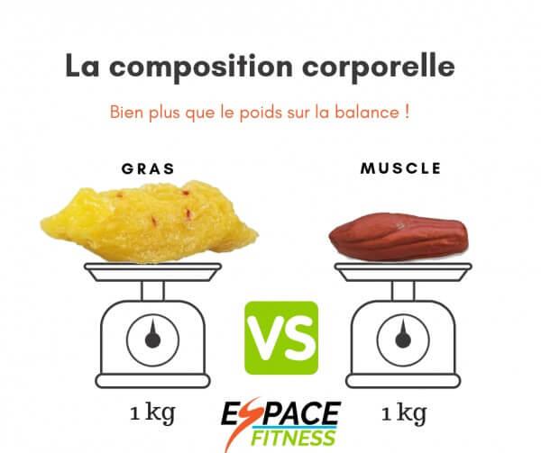 Différence entre 1 kilo de gras et 1 kilo de muscle