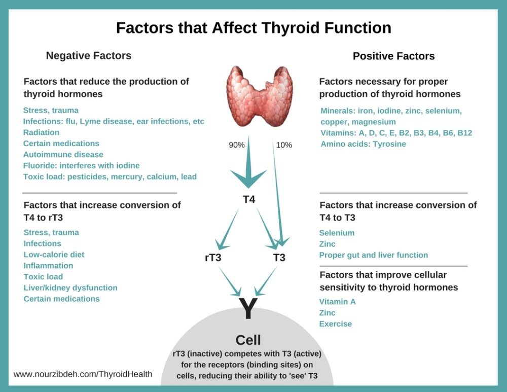 healthy thyroid_Thyroid diet