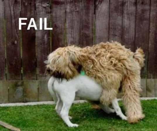 NXPL-Fail-position