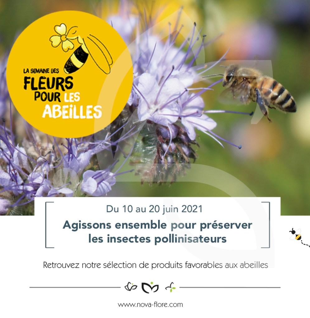 Du 10 au 20 juin, Nova-Flore participe à la 5ème édition de la Semaine des Fleurs pour les Abeilles. Cette initiative menée par Val'hor en partenariat avec l'Observatoire Français d'Apidologie, a pour but de sensibiliser chaque citoyen face à l'importance des plantes mellifères et les bienfaits qu'elles apportent aux insectes pollinisateurs. Face au déclin de ces derniers, les préserver devient une action à mener au quotidien, en aménageant nos espaces verts privés et collectifs. Notre qualité de vie dépend grandement de cet engagement lorsque l'on sait qu'un tiers des cultures pollinisées est destiné à notre alimentation. Soucieux d'entretenir l'équilibre de la biodiversité, Nova-Flore porte un réel intérêt à l'interaction faune/flore dans chaque développement de ses produits. Durant cette opération, toute notre équipe se mobilise pour vous faire découvrir chaque jour un produit répondant aux besoins des abeilles. N'oublions pas que chacun d'entre nous peut devenir acteur de la préservation des abeilles en semant des fleurs !