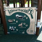 interactive animal sounds toy at Chessie's Big Back Yard