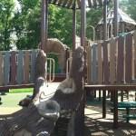 stump climber at Chessie's Big Back Yard