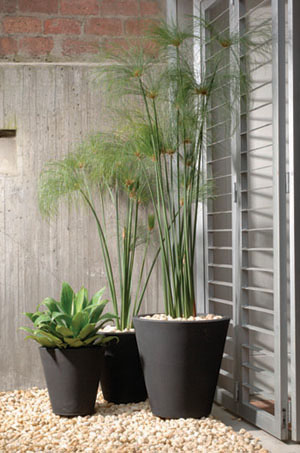Modern Planters Madison Planter 20 Inch Height X 20 Inch Width
