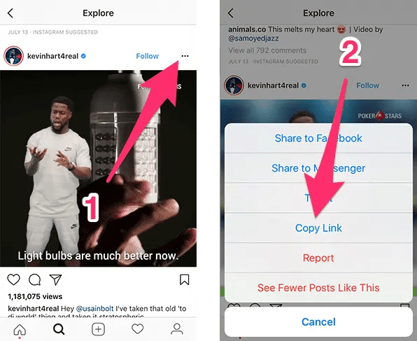download instagram photos and videos