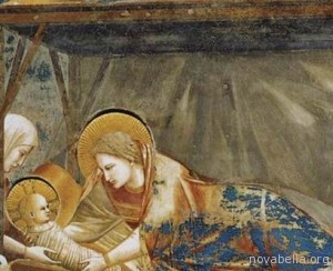 Giotto nativita