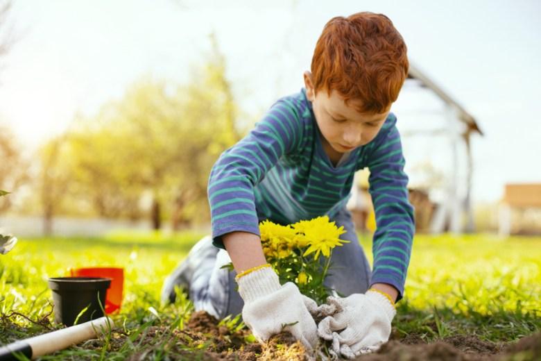 Chłopiec sadzący rośliny w ogórdku