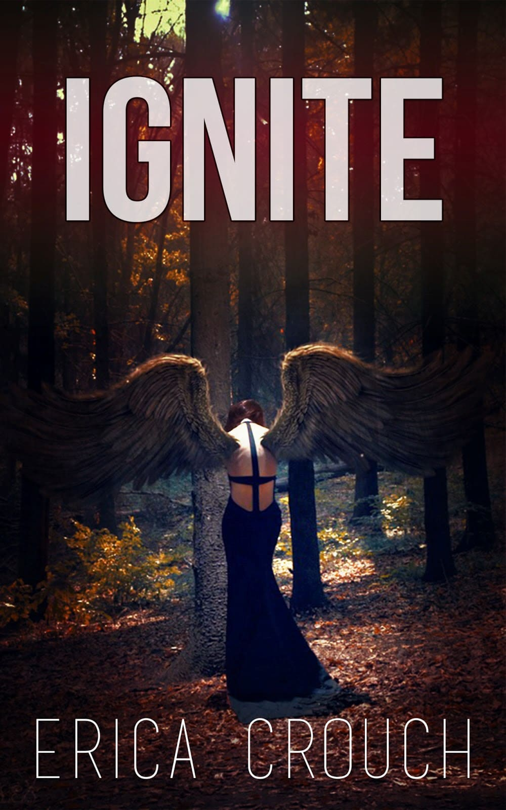 Review – Ignite by Erica Crouch