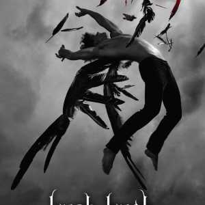 Review – Hush, Hush by Becca Fitzpatrick