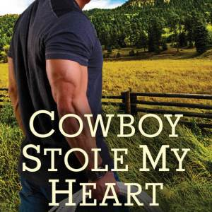 Review – Cowboy Stole My Heart by Soraya Lane