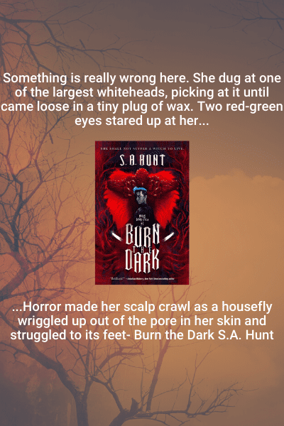 Burn the Dark Review